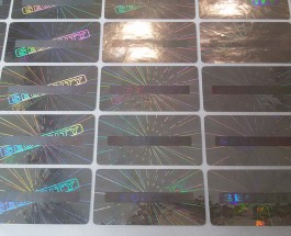 Hologram sticker Version 13